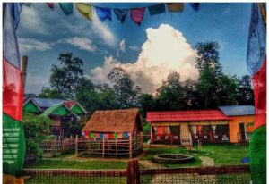 Buxa Eco Cottage