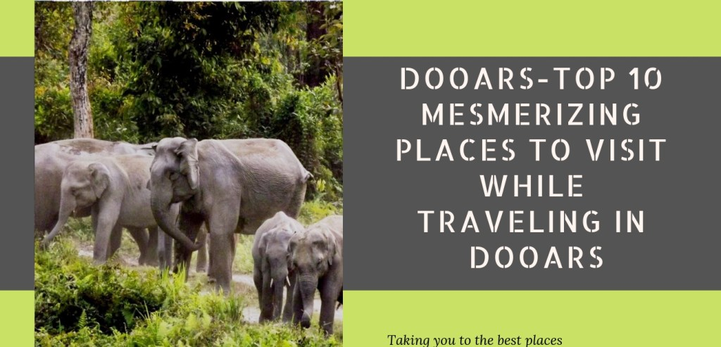 DOOARS TOURISM-TOP 10 MESMERIZING PLACES TO VISIT