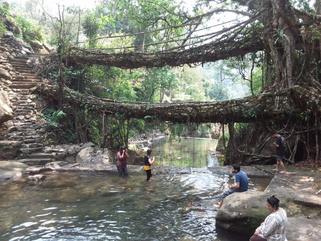 Double Decker Root Bridge,Nongriat