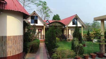 Gorumara Tea & Forest Retreat
