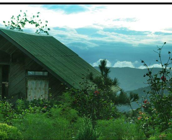Jhandi Eco Resort