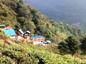 Kalej Tea Valley Resort,Rongbull