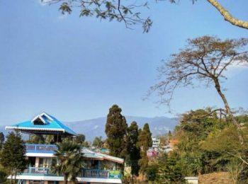 Singell Tea Garden Homestay